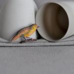 FlockingBird_Brooch_LittleWren_Front_Small_Mar15
