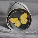 butterfly_yellow_small